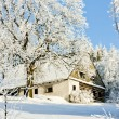 Cottage in winter — Photo