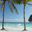 On beach, Cayo Coco, Cuba — Stock Photo #4296621