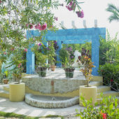 Garden, Cayo Coco, Ciego de — Stock Photo