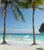 On the beach, Cayo Coco, Cuba — Stock Photo
