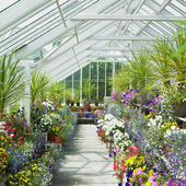 Greenhouse, Birr Castle Gardens, County Offaly, Ireland — Stock Photo