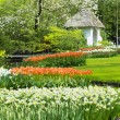 Stock Photo: Keukenhof Gardens