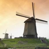 Windmills, Netherlands — Stock Photo