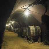 Wine cellar, Winery of Oldrich Splichal and Jitka Splichalova, N — Stock Photo