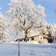 Cottage in winter — Stock Photo