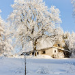 Cottage in winter — Stock fotografie