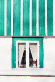 Detail of cottage — Stock Photo