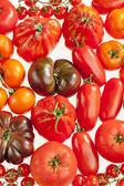 Ainda vida de tomate — Foto Stock