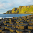 Stock Photo: Giant''s Causeway, County Antrim, Northern Ireland