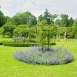 Florence Court Gardens, County Fermanagh, Northern Ireland — Stock Photo