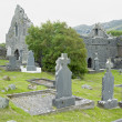 Stock Photo: Ruins of Murrisk Abbey, County Mayo, Ireland
