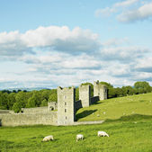 Kells Priory, County Kilkenny, Ireland — Stock Photo