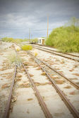 Overgrown tracks, Arizona, USA — Stockfoto