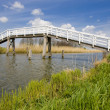 Bridge, Netherlands — Stock Photo #4426893