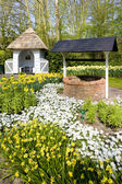 Keukenhof tuinen, lisse, nederland — Stockfoto