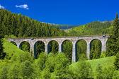 Railway viaduct near Telgart, Slovakia — Stock Photo