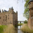 Doornenburg, Netherlands — Stock Photo #4502556