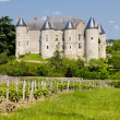 Luynes Castle with vineyard, Indre-et-Loire, Centre, France — Lizenzfreies Foto