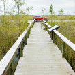 Everglades National Park, Florida, USA — Stock Photo