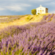 Chapel with lavender field, Plateau de Valensole, Provence, Fran — Stock Photo
