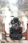 Last day of service of CKD steam locomotive n. 5 (1.4.2008), Cie — Stock Photo