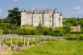 Luynes Castle with vineyard, Indre-et-Loire, Centre, France — Stock Photo