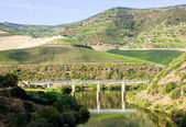 Railway viaduct in Douro Valley, Portugal — Stock Photo