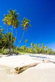 Cumana Bay, Trinidad — Stock Photo