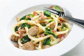 Makarony s krůtí maso a špenát — Stock fotografie