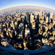 View of Manhattan from The Empire State Building, New York City, — Stock Photo #4589390