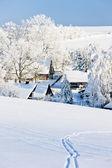 ドルニ ・ hedec、チェコ共和国 — ストック写真