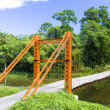 Stock Photo: Suspension bridge, Blanchisseuse, Trinidad