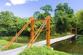 Suspension bridge, Blanchisseuse, Trinidad — Stock Photo