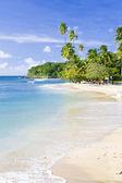 Mount Irvine Bay, Tobago — Stock Photo