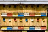 Beehive, Slovakia — Stock Photo