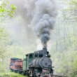Narrow gauge railway, Banovici, Bosnia and Hercegovina - Stock Photo