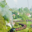 Steam freight train — Stock Photo
