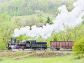 Steam freight train (126.014), Resavica, Serbia — Stock Photo