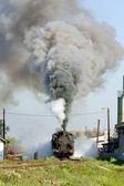 Locomotora de vapor, durdevik, bosnia y hercegovina — Foto de Stock