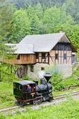 Dampf Lok und alte Säge, Museum des Kysuce-Dorfes, vyc — Stockfoto