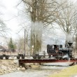 Steam train — Stock Photo #4672902
