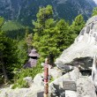 Cemetery in High Tatras, Slovakia - Stock Photo