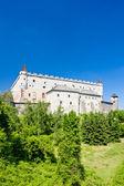 Burg zvolen — Stockfoto