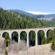 Railway viaduct — Stock Photo #4681532