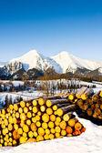 Belianske Tatras — Stock Photo