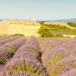Chapel with lavender field in Provence — Foto Stock