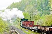 Narrow gauge railway — Stock Photo