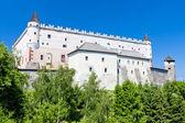Zvolen Castle — Stockfoto