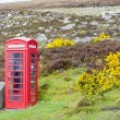 Telephone booth and letter box - Stock Photo