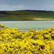 Stock Photo: Loch Eriboll